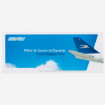 032-EBT-Excess-Baggage-Ticket-cover